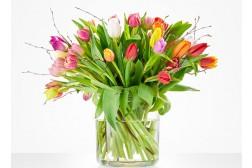 Tulpenboeket 2.0